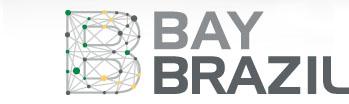 baybrazil_logo
